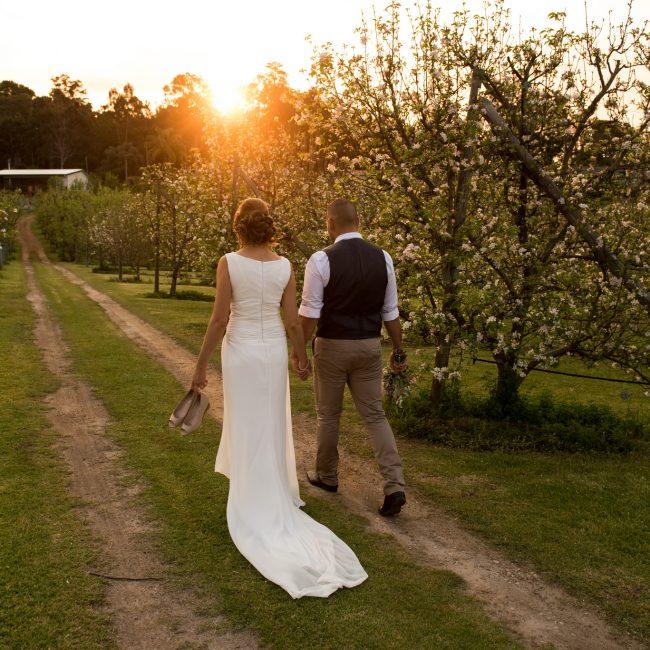 newlyweds walking into the sunset