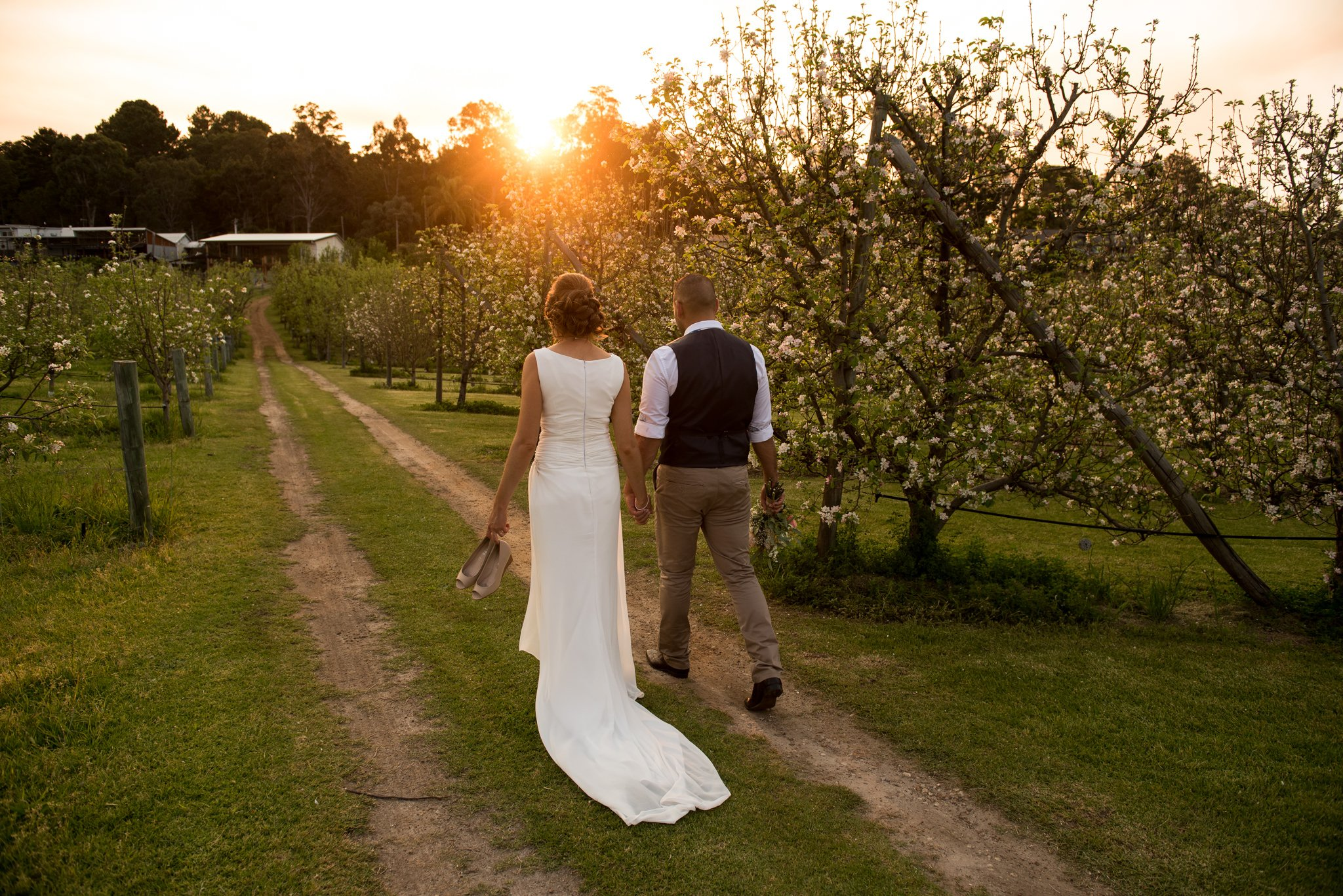 newlyweds walking into the sunset