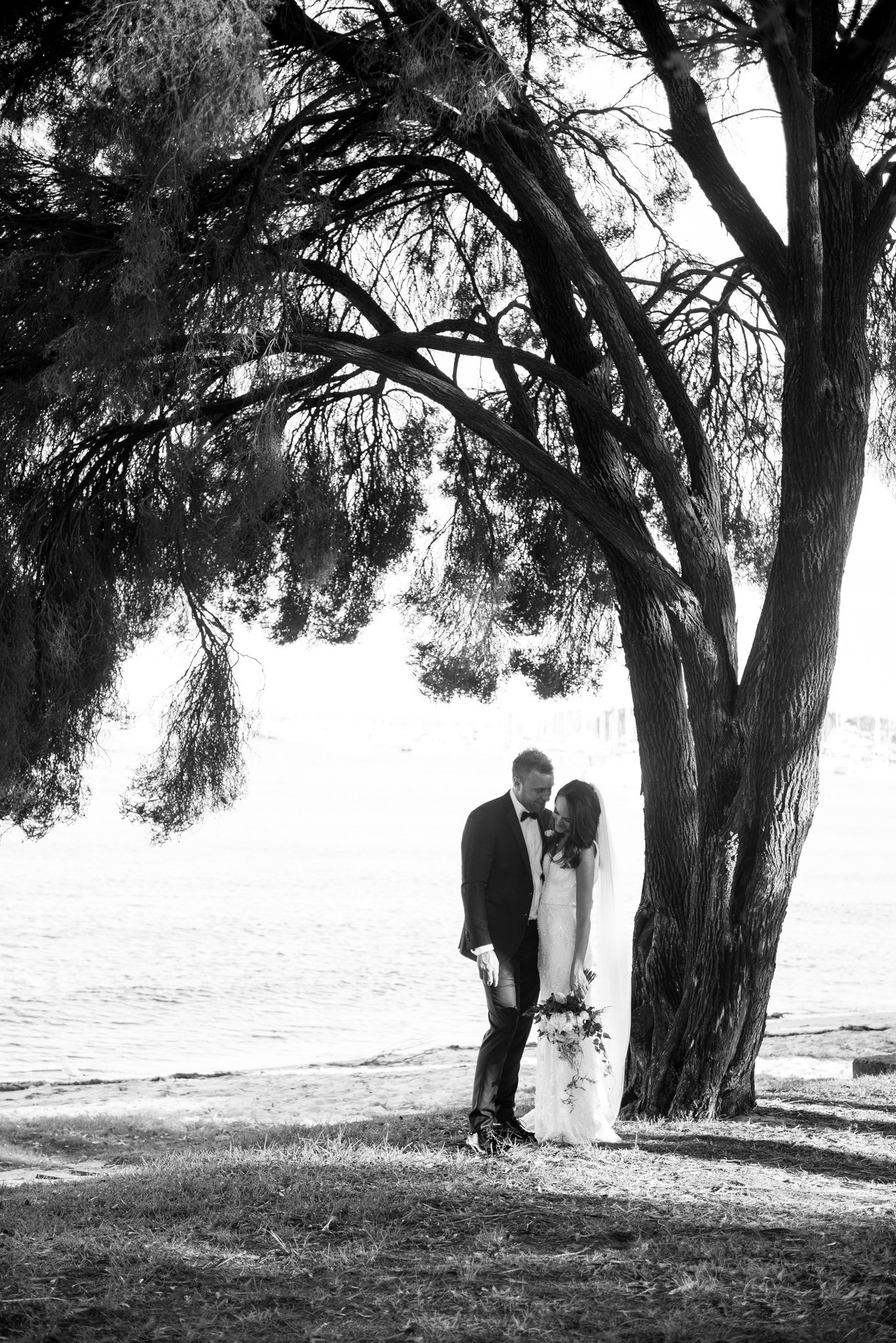 bride and groom under a tree