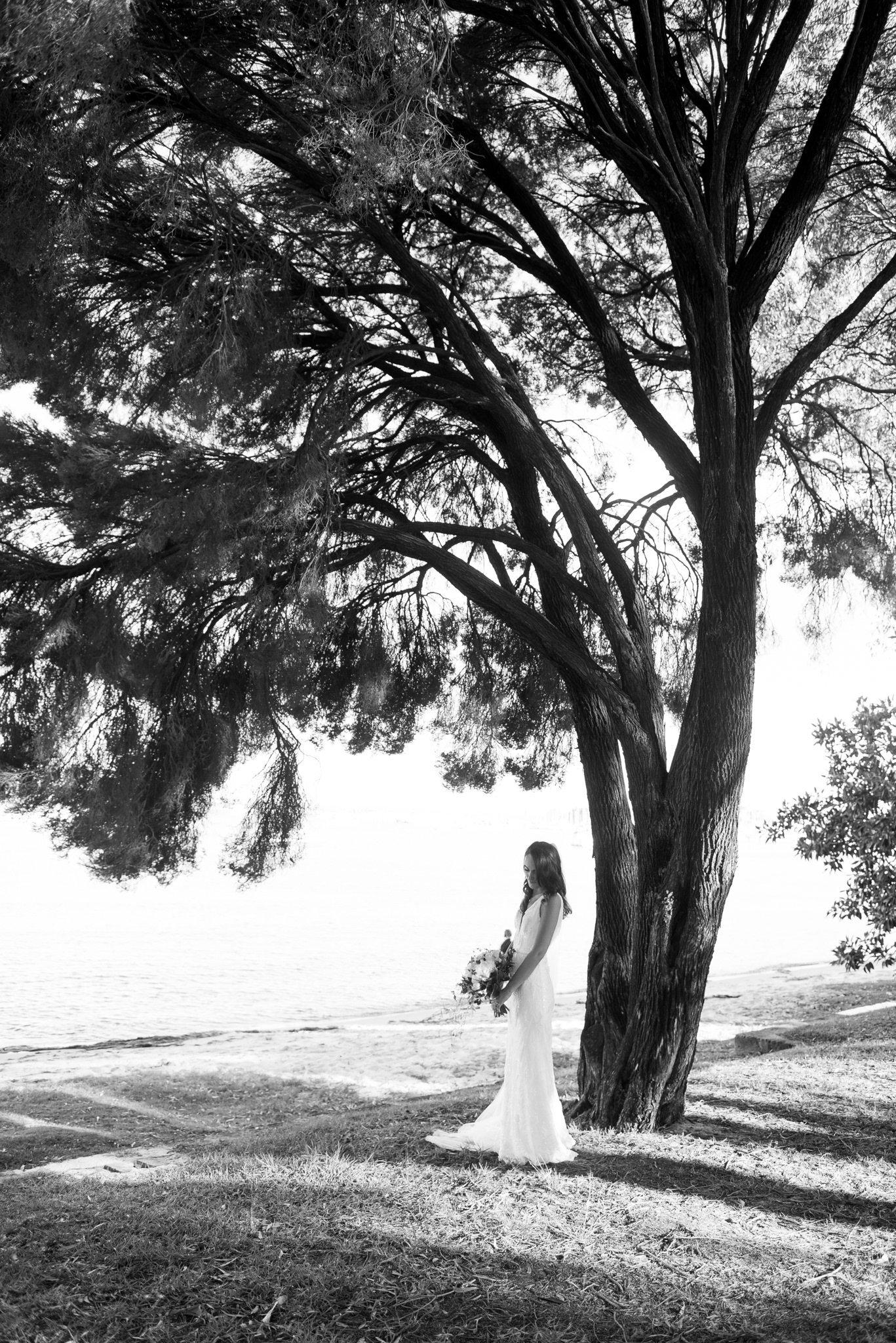 bride under a tree