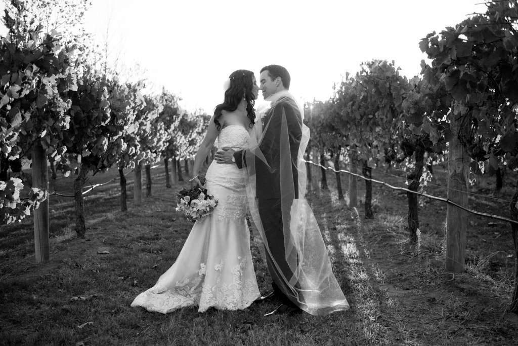 bride and groom in the grapevine